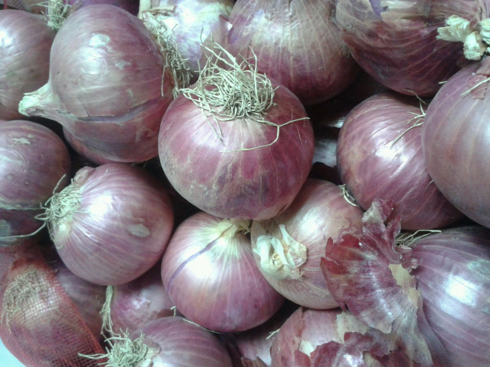 Big Onion (Bombay / Mumbai Onion) 250 g