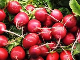 Fresh Certified Organic Red Radish, 250g Pack